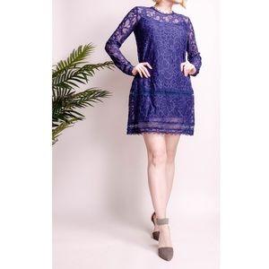 Lovers + Friends blue lace Senorita shift dress